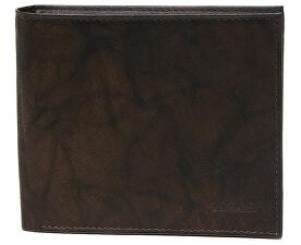 Pánská hnědá kožená peněženka Brown W-8154-2