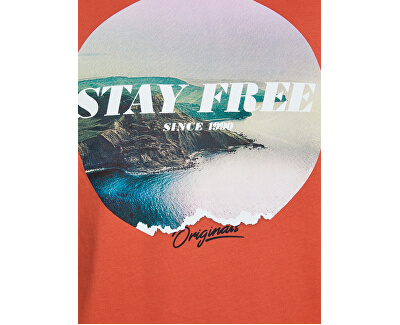 Herren T-Shirt JORFADING TEE SS CREW NECK Chili REG