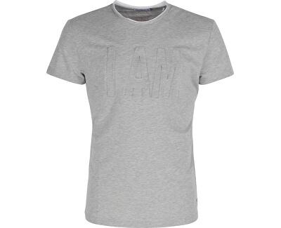 Noize Pánské triko s krátkým rukávem Grey 4433120-00 - SLEVA až 405 ... 7ccfa4d21a