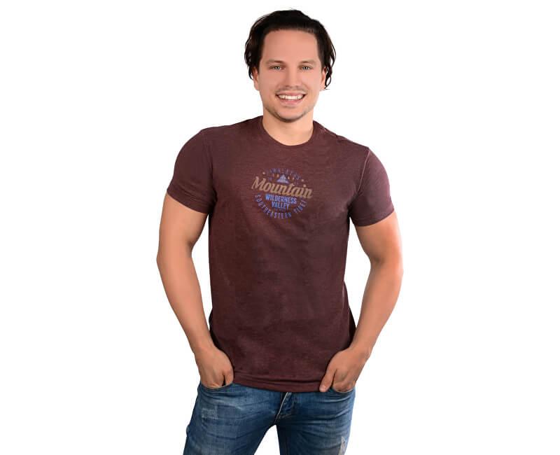 LOAP Pánské triko s krátkým rukávem Bade And Melange CLM1767-R70X