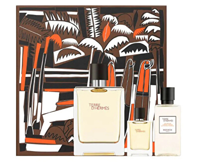 Terre D´ Hermes - EDT 100 ml + sprchový gel 40 ml + EDT 5 ml