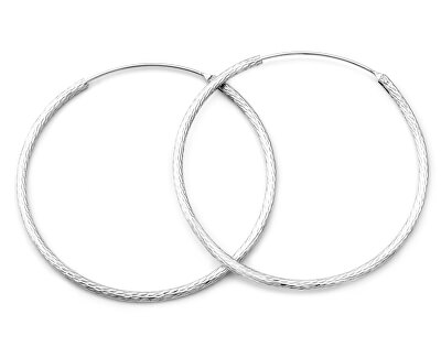 Třpytivé stříbrné kruhové náušnice AGUC1240