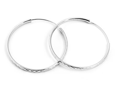 Třpytivé stříbrné kruhové náušnice AGUC2098/30/N
