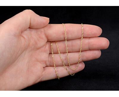 Lanț de lux din aur galben 45 cm 271 115 00181