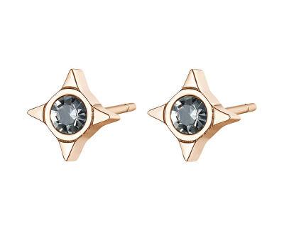 Elegantné oceľové náušnice s kryštálmi CLICK SCK50