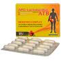 APO-Lactobacillus ATB 15 kapslí