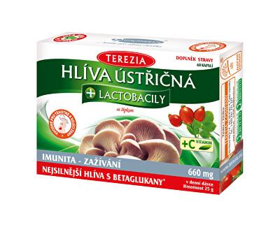 Hlíva ústřičná + laktobacily + vitamín C 50 kapslí + 10 kapslí ZDARMA