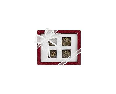 OXALIS Asteria červená - set kvitnúcich čajov