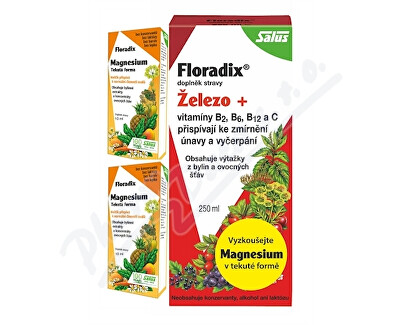 SALUS HAUS SALUS Floradix 250ml+2x vzorek Magnesium 10ml