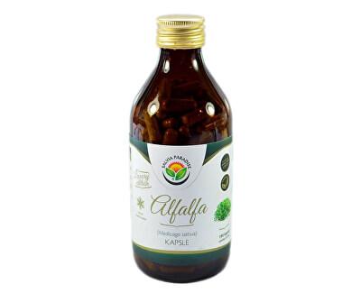 Salvia Paradise Alfalfa - vojtěška 190 kapslí<br /><strong>Alfalfa - Mladá zelená vojtěška</strong>