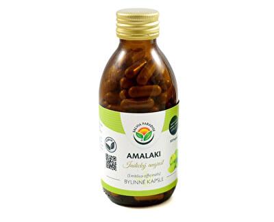 Salvia Paradise Amalaki kapsule<br /><strong>Amalaki kapsle</strong>