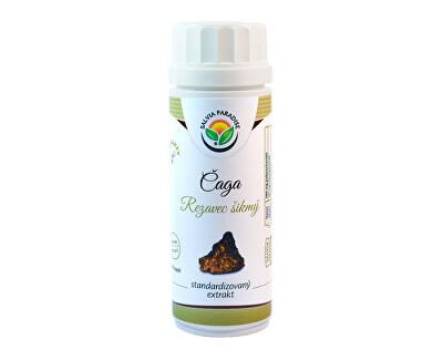Salvia Paradise Čaga - Rezavec šikmý standardizovaný extrakt 100 kapslí<br /><strong>Čaga - Rezavec šikmý standardizovaný extrakt kapsle</strong>