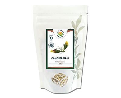 Salvia Paradise Canchalagua<br /><strong>Canchalagua</strong>