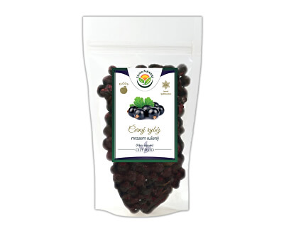 Salvia Paradise Černý rybíz mrazem sušený<br /><strong>Černý rybíz sušený mrazem - lyofilizovaný</strong>