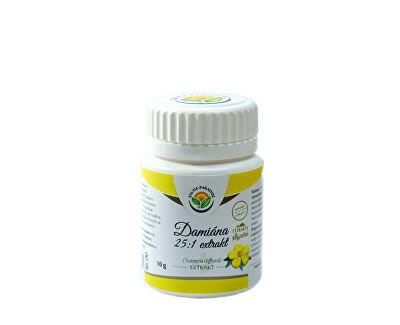Salvia Paradise Damiána - Turnera diffusa 25:1 extrakt 10 g<br /><strong>Damiána extrakt</strong>