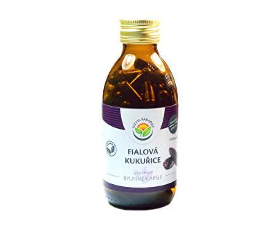 Salvia Paradise Fialová kukuřice - Maiz morado kapsle<br /><strong>Fialová kukuřice</strong>