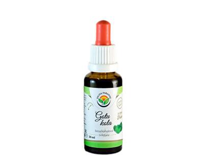 Salvia Paradise Gotu kola - Pupečník AF tinktura<br /><strong>Gotu kola tinktura</strong>