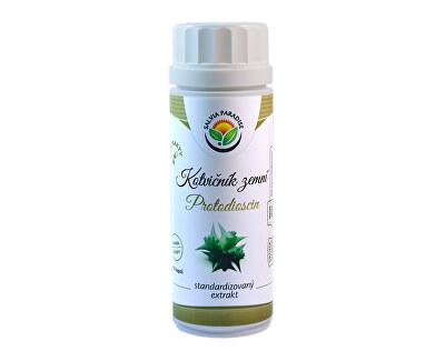 Salvia Paradise Kotvičník - protodioscin extrakt 100 kapslí<br /><strong>Kotvičník extrakt</strong>