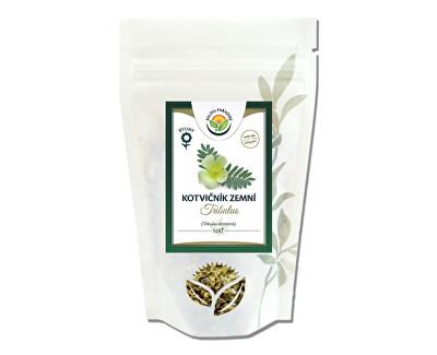Salvia Paradise Kotvičník - Tribulus vňať<br /><strong>Kotvičník nať</strong>