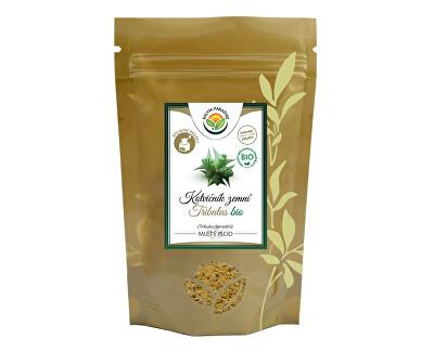 Salvia Paradise Kotvičník - Tribulus plod prášok BIO 100g<br /><strong>Kotvičník prášek</strong>