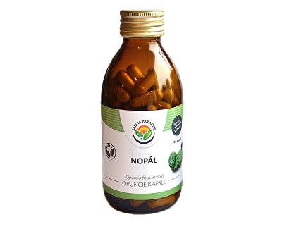 Salvia Paradise Nopál - Opuncie kapsle<br /><strong>Nopál kapsle</strong>