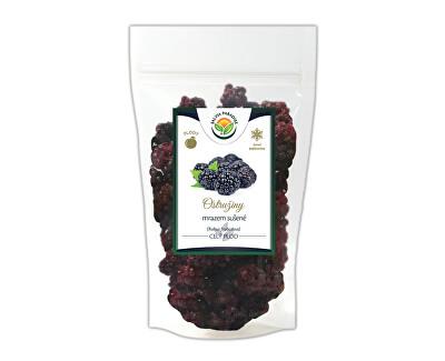 Salvia Paradise Ostružiny mrazem sušené<br /><strong>Ostružiny</strong>
