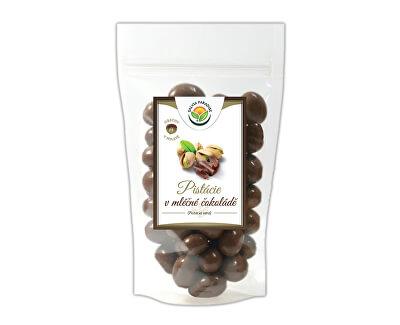 Salvia Paradise Pistácie v mléčné čokoládě<br /><strong>Pistácie v čokoládě</strong>