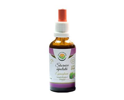 Salvia Paradise Škornice - Epimedium AF tinktura<br /><strong>Škornice tinktura</strong>