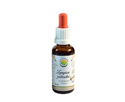 Salvia Paradise Žampion zahradní AF tinktura<br /><strong>Žampion tinktura</strong>