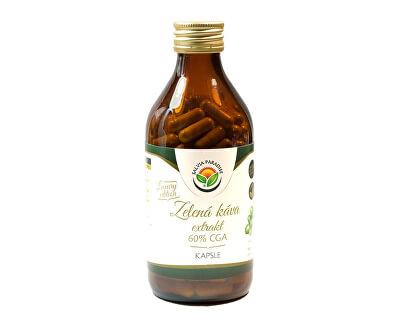 Salvia Paradise Zelená káva extrakt 60% CGA 190 kapslí<br /><strong>Zelená káva</strong>