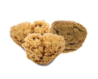 Mořská mycí houba na pleť 3L
