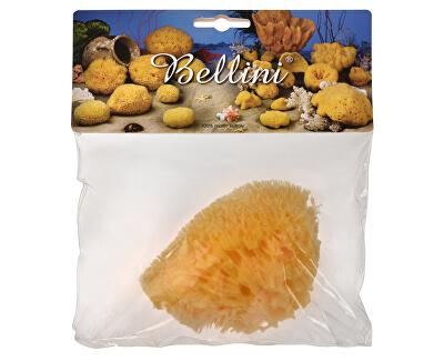 BELLINI Přírodní mořská houba – Středomořská – HONEYCOMB – SVĚTLÁ